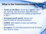 what is the commission doing