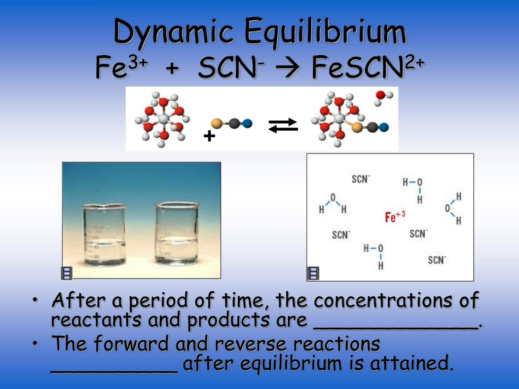 fe scn 3_PPT - Chapter 16 – Chemical Equilibria PowerPoint Presentation, free download - ID ...