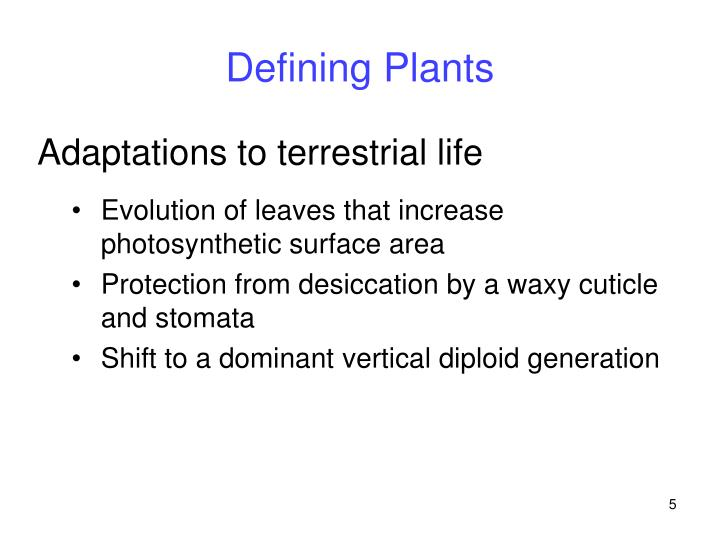 Defining Plants
