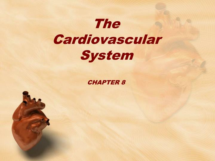 the cardiovascular system chapter 8 n.