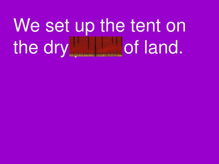 We set up the tent on the dry patch of land.