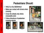pedestrians should