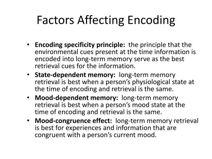 Factors Affecting Encoding