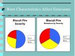 burn characteristics affect emissions