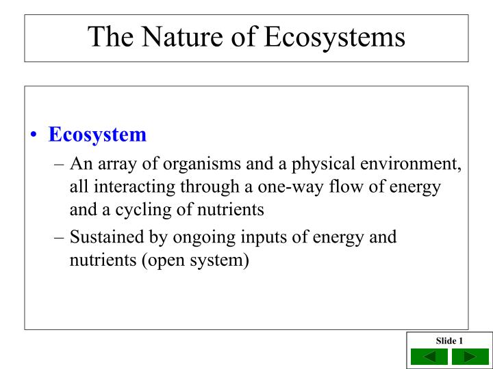 the nature of ecosystems n.
