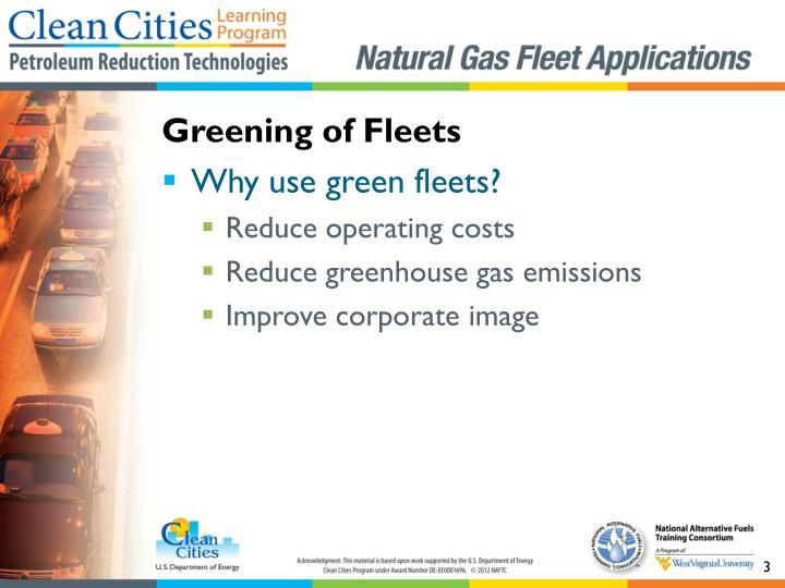 Greening of fleets