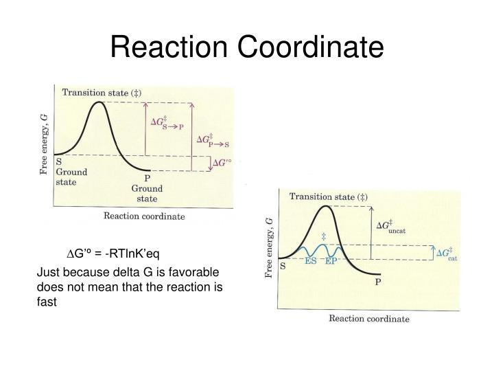 Reaction Coordinate