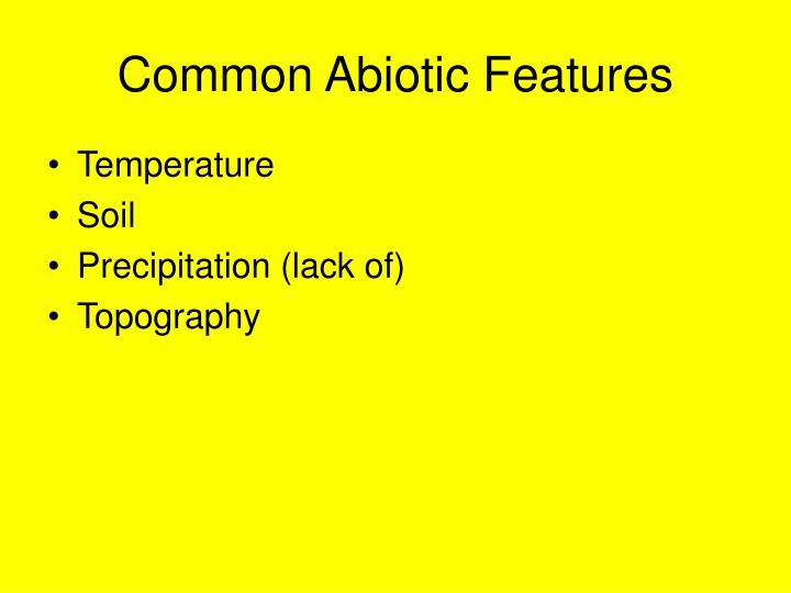Common Abiotic Features