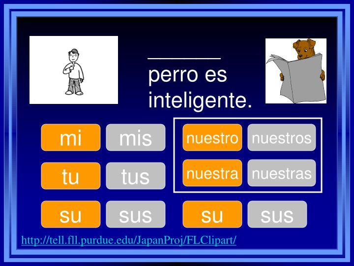 ______ perro es inteligente.