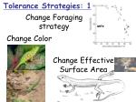 change effective surface area