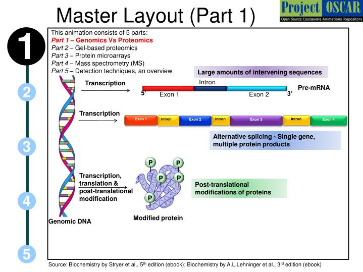 proteomics techniques overview essay Profile essay a profile essay is a type of essay that centers a certain person, place, or thing one of the most common profile essay assignments is one in which the.