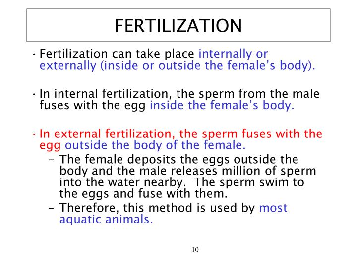 FERTILIZATION