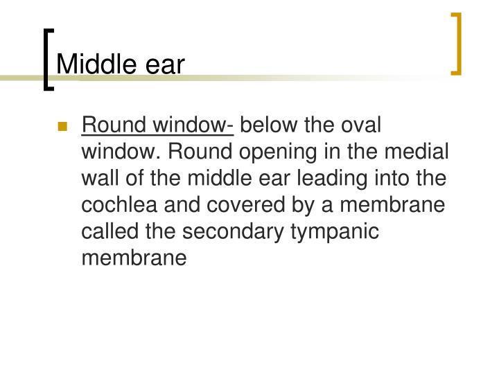 Middle ear