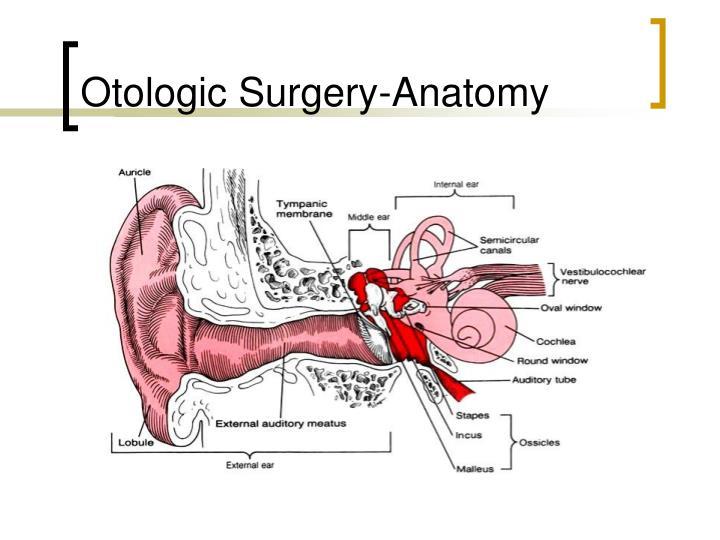 Otologic surgery anatomy