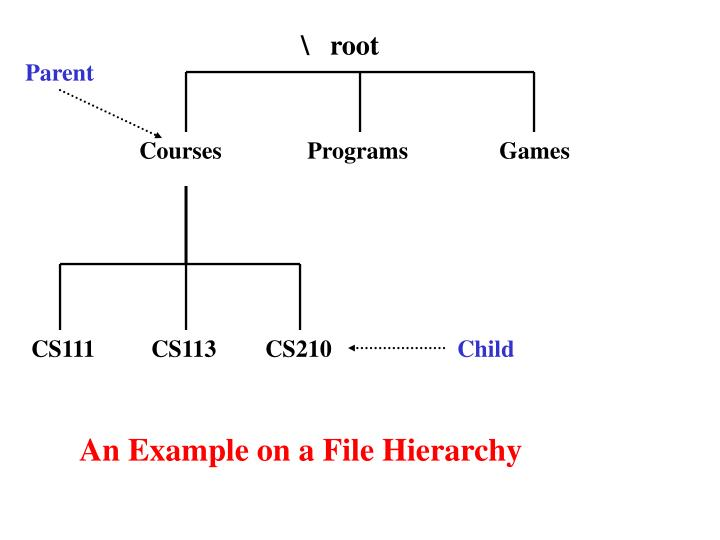 \   root