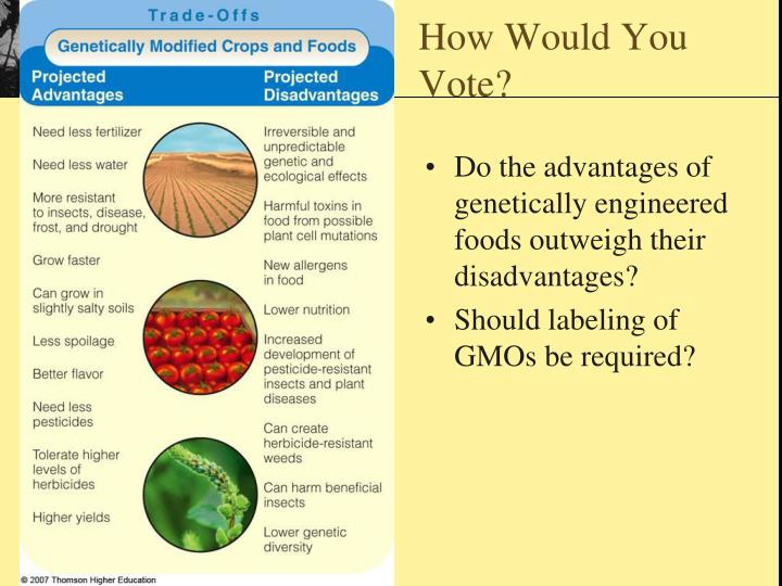 a study of the harmful effects of genetically engineered foods on human health And the ability of researchers to track potential health effects of gmos in the human population it unfairly implies that foods with genetically engineered.