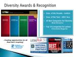 diversity awards recognition