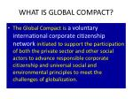 what is global compact