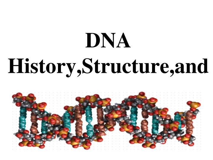dna history structure and n.