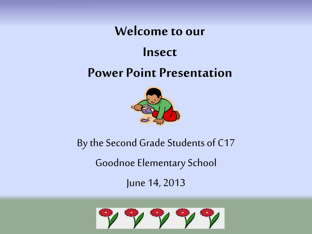 Ppt Welcome To Our Insect Power Point Presentation Powerpoint Bug Zapper Schematic Circuit Stinger N