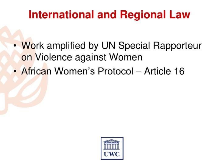 Work amplified by UN Special Rapporteur on Violence against Women