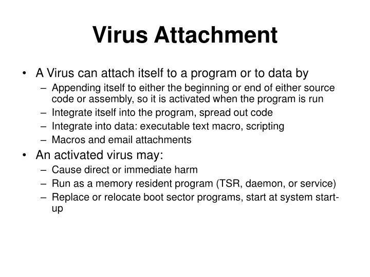 Virus Attachment