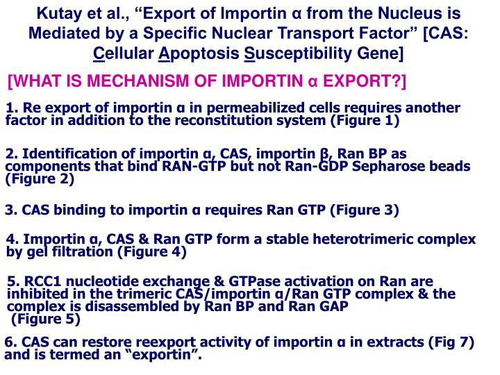 """Kutay et al., """"Export of Importin"""