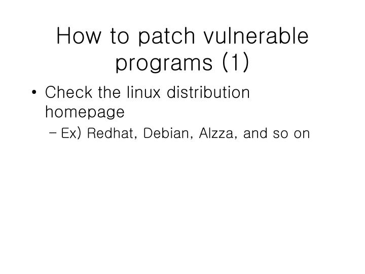 How to patch vulnerable programs (1)