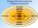 strategy should consider the company s ecosystem