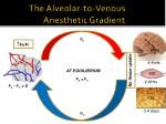 the alveolar to venous anesthetic gradient
