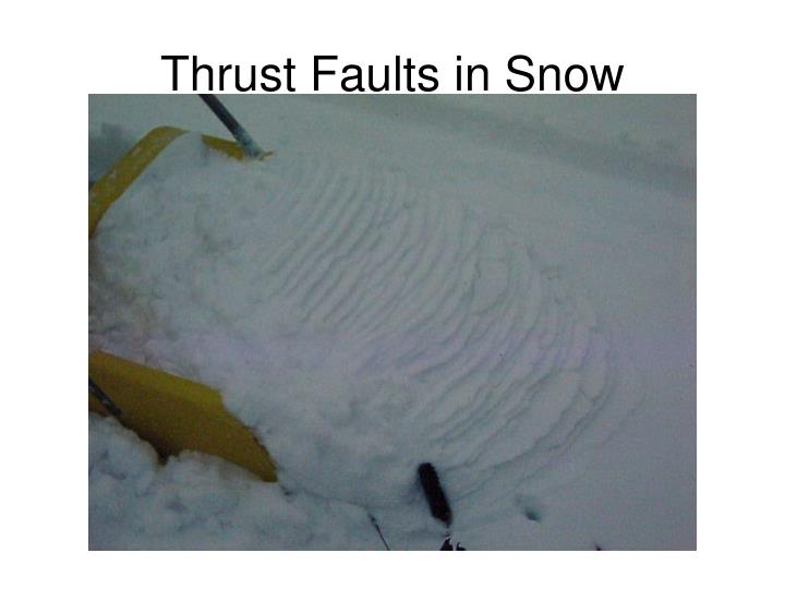 Thrust Faults in Snow