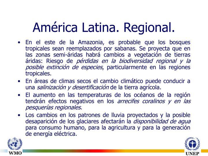 América Latina. Regional.
