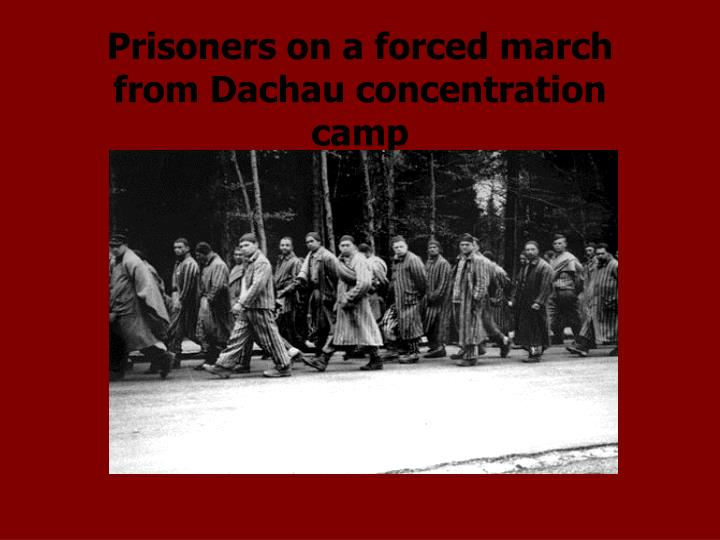 Prisoners on a forced march from Dachau concentration camp