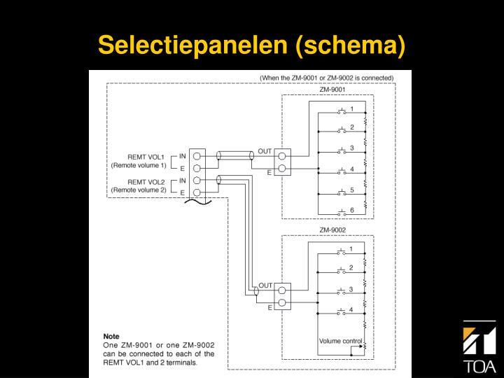 Selectiepanelen (schema)