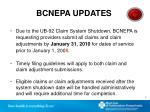 bcnepa updates1