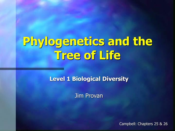 ap biology essay phylogenetic tree This ap biology review section covers diversity in living organisms, including phylogenetic trees and classifications and plants and animals.