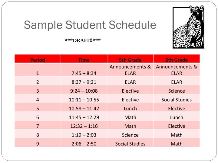 Sample Student Schedule