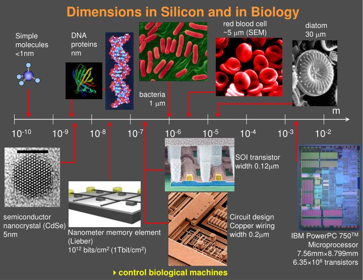 an overview of the silicon and its use as a semiconductor