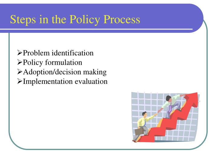 Steps in the Policy Process