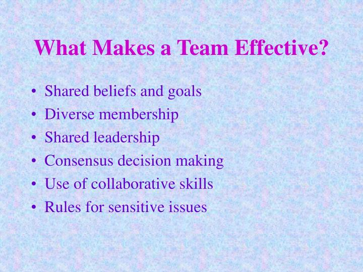 What makes a team effective
