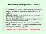 cross cutting principles of sg policies