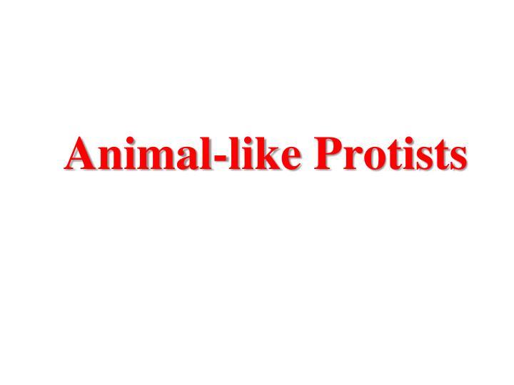 Animal-like