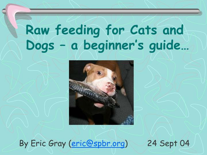 Raw feeding for cats and dogs a beginner s guide