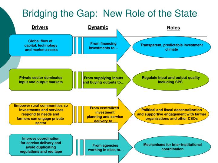 Bridging the Gap:  New Role of the State