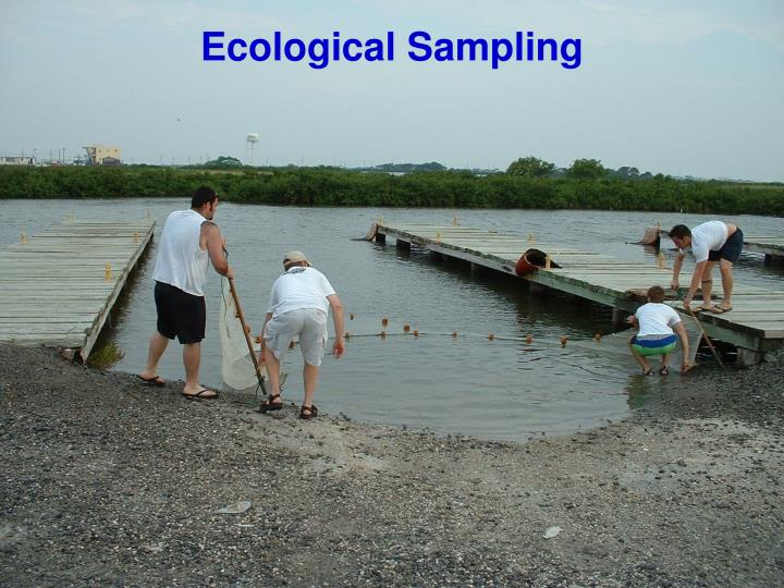 ecological sampling Oak ridge, tenn – the us department of energy's (doe) oak ridge office of environmental management (orem) has awarded strata-g llc a contract to perform environmental sampling in support of efforts to construct additional onsite disposal capacity on the doe's oak ridge reservation.