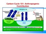 carbon cycle 101 anthropogenic contribution