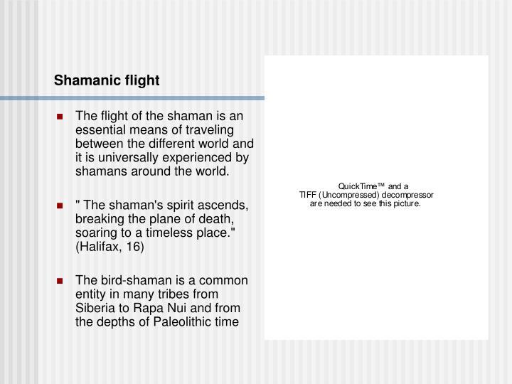 Shamanic flight