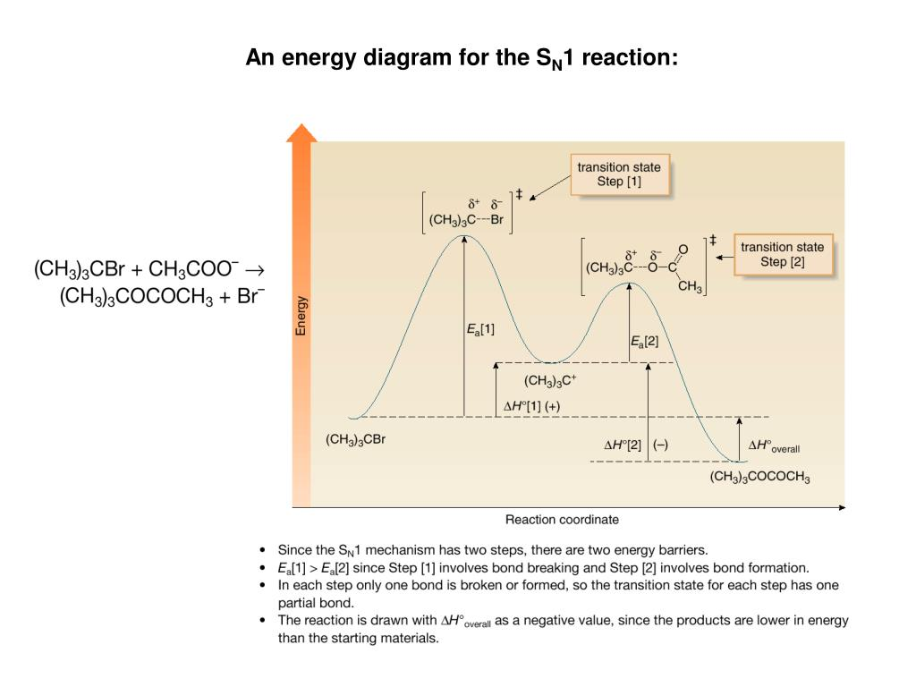 Potential Energy Diagram For Sn1 Reaction.Ppt Alkyl Halides Are Organic Molecules Containing A