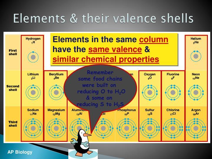 Elements & their valence shells