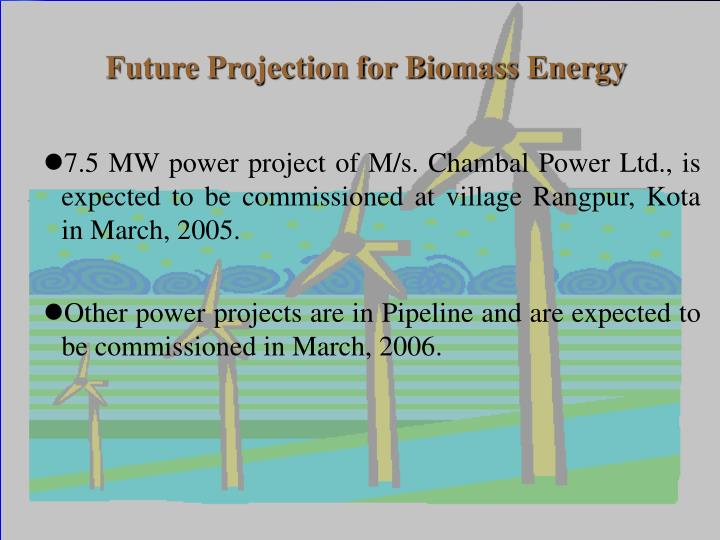 Future Projection for Biomass Energy